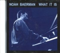 [import][中古CD] NOAH BAERMAN /WHAT IT IS